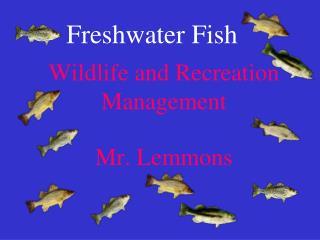 Wildlife and Recreation Management Mr. Lemmons