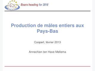 Production de mâles entiers aux Pays-Bas