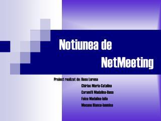 Notiunea de                    NetMeeting