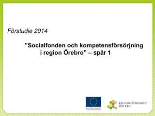 """Förstudie 2014            """"Socialfonden och kompetensförsörjning  i region Örebro"""" – spår 1"""