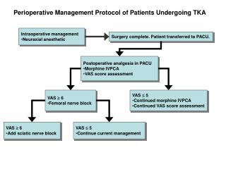 Perioperative Management Protocol of Patients Undergoing TKA
