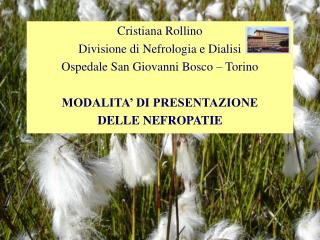 Cristiana Rollino Divisione di Nefrologia e Dialisi Ospedale San Giovanni Bosco   Torino  MODALITA  DI PRESENTAZIONE  DE