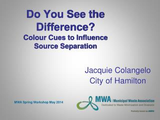 Do You See the Difference? Colour Cues to Influence Source Separation