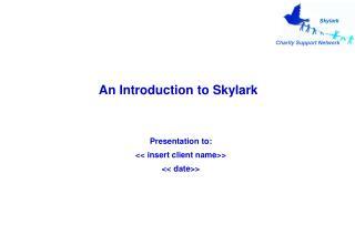 An Introduction to Skylark