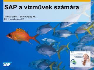 SAP a vízművek számára