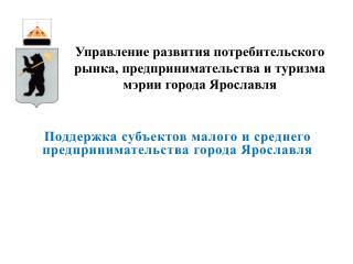 Поддержка субъектов малого и среднего предпринимательства города Ярославля