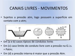 CANAIS LIVRES - MOVIMENTOS