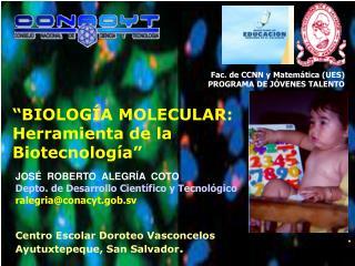 JOS�  ROBERTO  ALEGR�A  COTO Depto. de Desarrollo Cient�fico y Tecnol�gico ralegria@conacyt.gob.sv