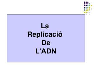 La  Replicació  De L'ADN
