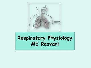 Respiratory Physiology ME  Rezvani
