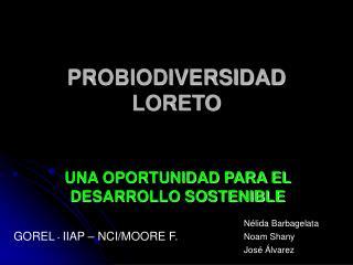 PROBIODIVERSIDAD LORETO
