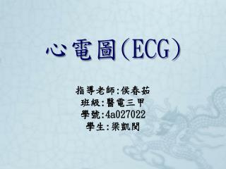 心電圖 (ECG)