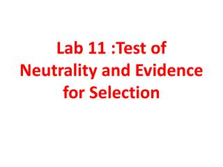 Lab 11 :Test of Neutrality and Evidence for Selection
