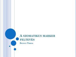 A szomatikus marker feltevés