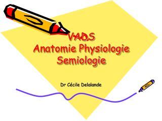 VADS Anatomie Physiologie Semiologie
