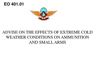 ADVISE ON THE EFFECTS OF EXTREME COLD WEATHER CONDITIONS ON AMMUNITION AND SMALL ARMS