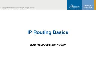 IP Routing Basics