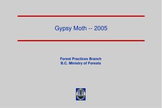 Gypsy Moth -- 2005