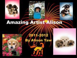 Amazing Artist Alison