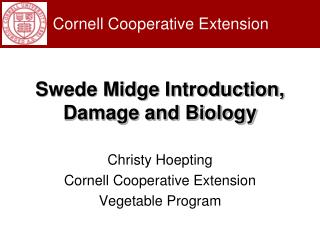 Swede Midge Introduction, Damage and Biology