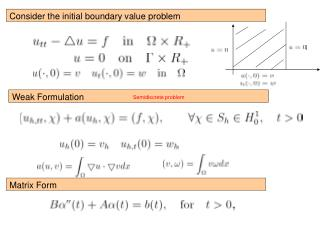 Consider the initial boundary value problem