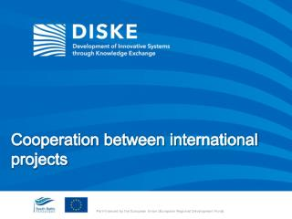 Cooperation between international projects