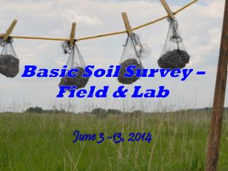 Basic Soil Survey � Field & Lab