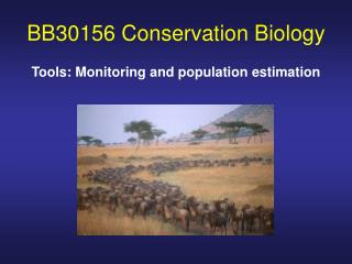 BB30156 Conservation Biology