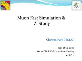 Muon  Fast Simulation &  Z' Study