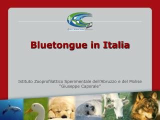 Bluetongue in Italia