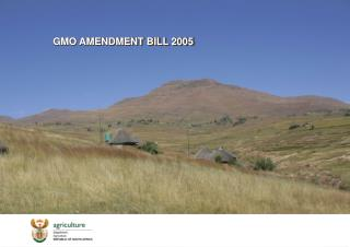 GMO AMENDMENT BILL 2005
