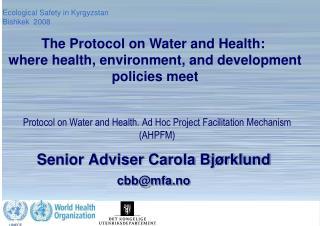 Senior Adviser Carola Bjørklund cbb@mfa.no