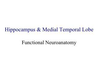 Hippocampus & Medial Temporal Lobe Functional Neuroanatomy