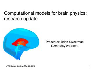 Computational models for brain physics:  research update