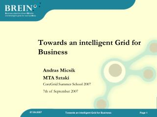 Towards an intelligent Grid for Business