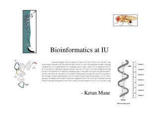 Bioinformatics at IU