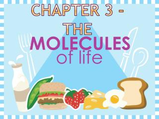 Chapter 3 - the
