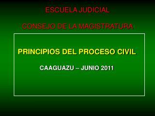 PRINCIPIOS DEL PROCESO CIVIL CAAGUAZU � JUNIO 2011