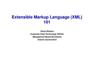 Extensible Markup Language (XML) 101