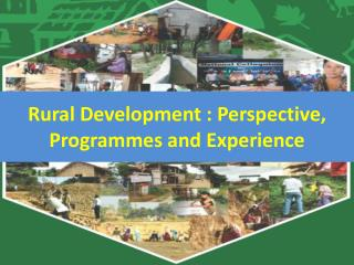 Rural Development : Perspective, Programmes  and Experience