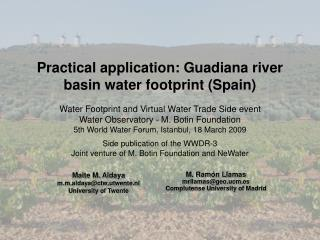 Practical application: Guadiana river basin water footprint (Spain)
