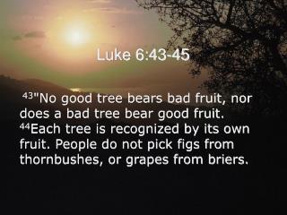 Luke 6:43-45