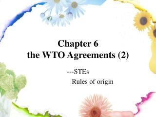 Chapter 6  the WTO Agreements (2)