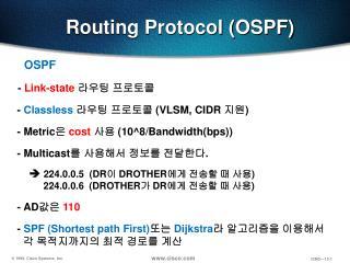 Routing Protocol (OSPF)