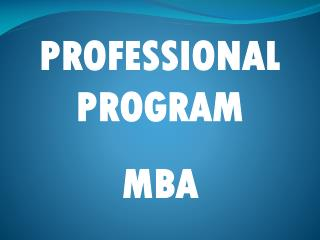 PROFESSIONAL PROGRAM MBA