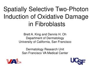 Spatially Selective Two-Photon  Induction of Oxidative Damage  in Fibroblasts