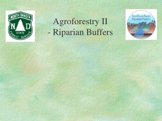 Agroforestry II  - Riparian Buffers