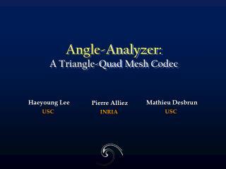 Angle-Analyzer: A Triangle-Quad Mesh Codec