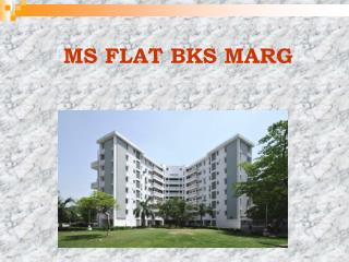 MS FLAT BKS MARG