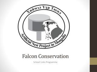 Falcon Conservation